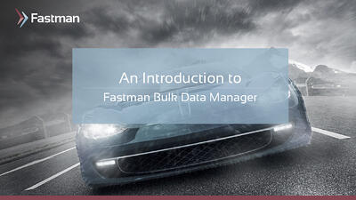 Presentation_Bulk-Data-Manager